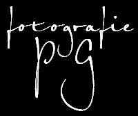 fotografie – pg
